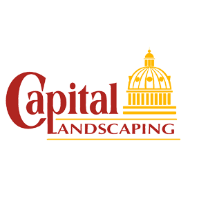 Our Sponsor: Capital Landscaping